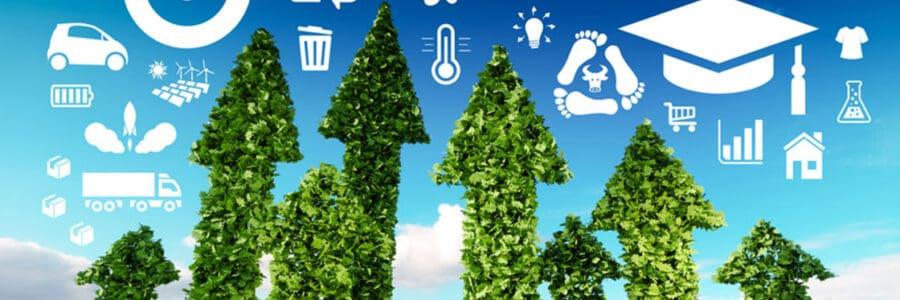 FOCUS – Il Green Deal europeo: sostenibilità e comunicazione